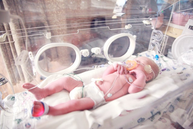 Are premature babies developmentally delayed?
